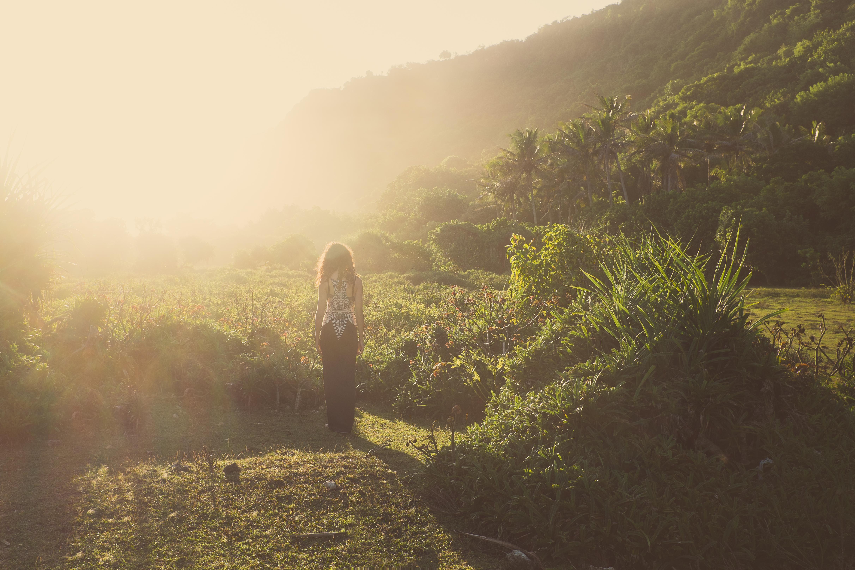 Mystical Secret Garden